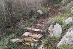 Καθαρισμός Λόφου Περάνθης